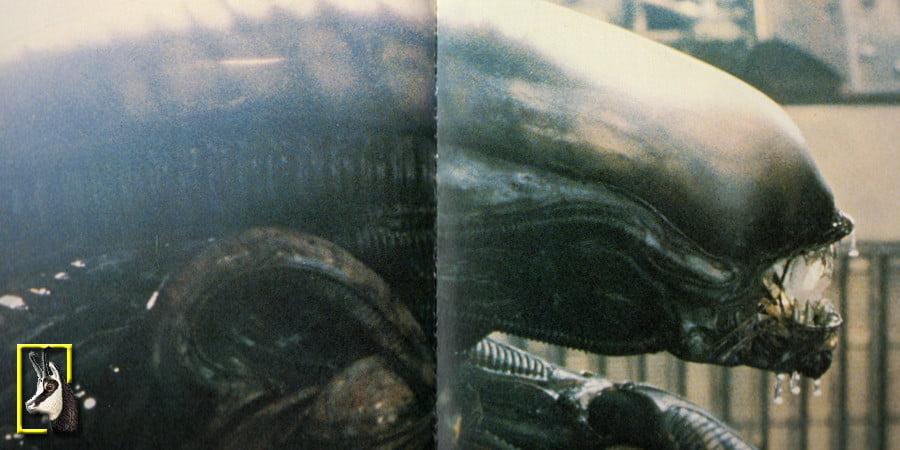 alien-testa