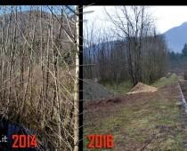 In questa immagini si puo chiaramente notare la differenza, del prima e del dopo